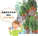 20180630-burogu-camera-asakusa-hozukiichi.png
