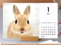 カレンダー講座2.png