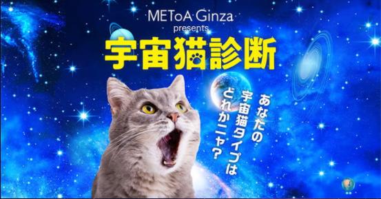 宇宙猫診断.png